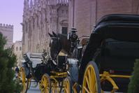 coches de caballos