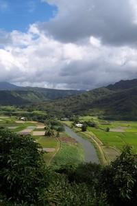 Hawaiian Farmland 2