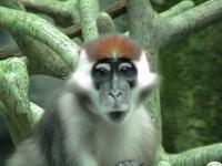 Zoo trip 3