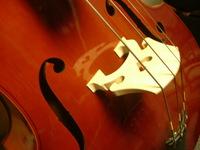 Concert Strings