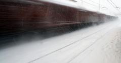 White speed