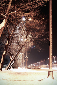 city night in snow