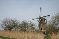 Dutch Windmill at Kinderdijk #3 2