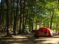 Camping Trip 8