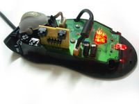 Inside the mouse