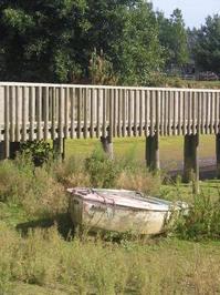 grassy boat