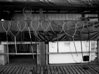 Fish Nets (B&W)
