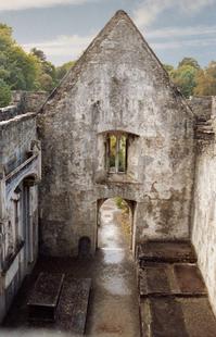 Ireland Ruins 4