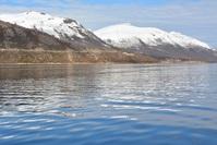 Norwegian coastal landscape 3