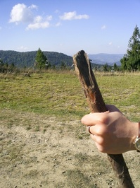travelling stick