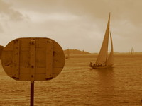 regatta 5