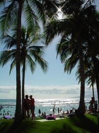 Wakiki Beach 3