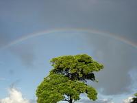 Rainbow in Porto Seguro