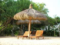 Thatched Roof Sunbathed Bench