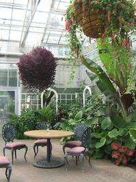Frederik Meijer Gardens 4