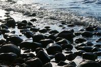 Lake Scenery 1