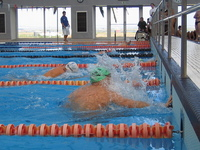 Swimming_0 1
