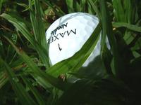 Golf Balls in hazards 1