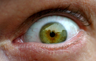 Eyeball 01