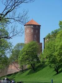 castle royal of wawel