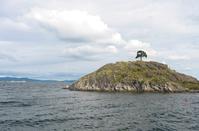 Single Tree Island