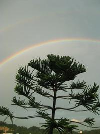 Glorious Rainbow 3