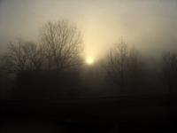 The Foggy Awakening