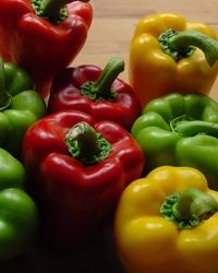 pepper composition 2