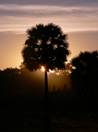 Sunrise Chanting
