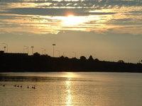 River-Duck Sunset