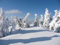 Snowcovered