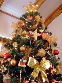My 2007 Christmas Tree