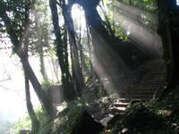 Lost Stairway