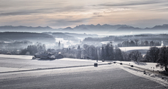 Morning on Winter Landscape