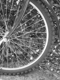 Mountainbike front wheel B/W