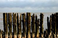 Langs de Friese Waddenkust