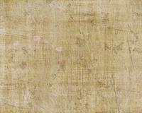 Grassy Grunge Canvas