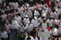 Immigration Rally 1