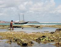 schooner and coral