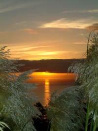Resultado de imagem para imagem do sol se pondo no mar