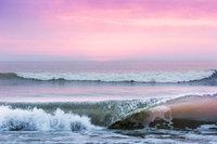Pink Florida Sunrise