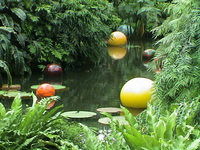 chihuly 2