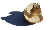 Mushroom  underside 1