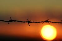 sunset & fence 35