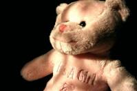 a plush bear