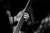 Bass Guitar Player