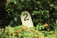 House number two