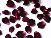 Rose petals 4