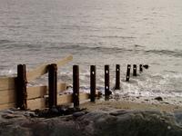 Seaside Rust
