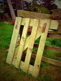 Broken Garden Gate